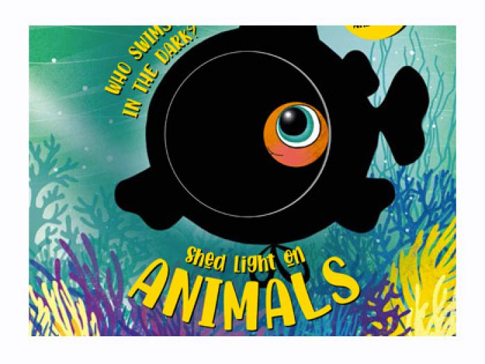 Animals magic torch board book - Shed light on